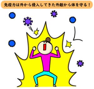 免疫力は外から侵入してきた外敵から体を守る