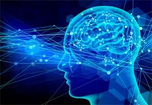 脳内神経伝達物質