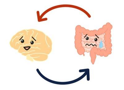 腸は第二の脳