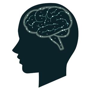 脳の機能低下