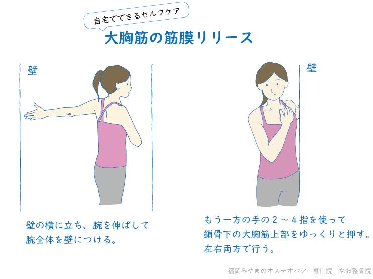 肩こり解消セルフケア大胸筋の筋膜リリース